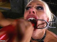Puma Swede and Sandy in rough action
