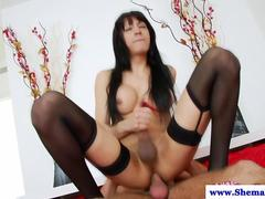 Tranny TS Nicole Fernandes jumps on dick