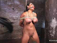 Hogtied gagged brunette drooling